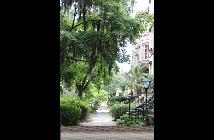 Located in this neighborhood with all the beauty and charm Savannah is known for.