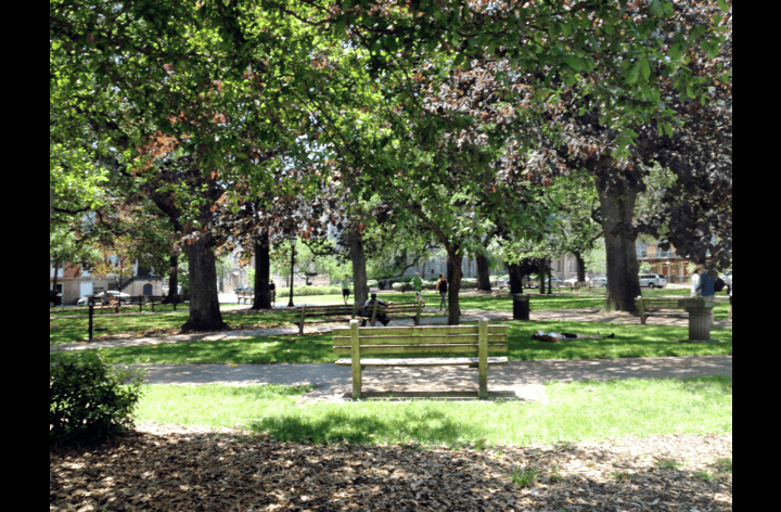 Beautiful Oglethorpe Square is right outside your door.